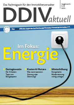Cover DDIVaktuell 03 2013